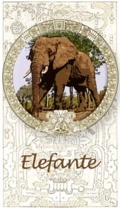 Elefante - animales totémicos