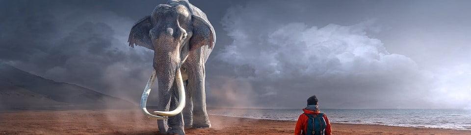 mamut-recortada