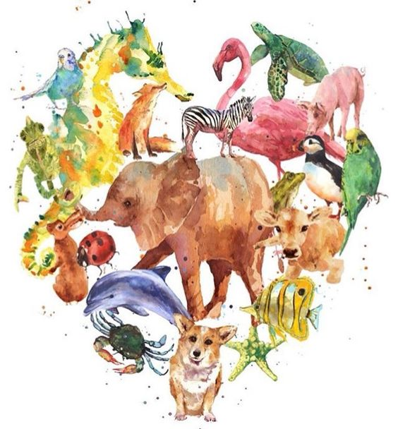 vegetarianismo pros y contras