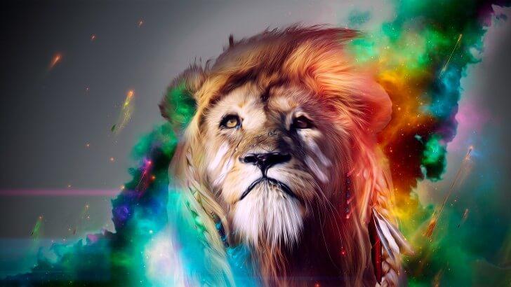 qué animal soy? chamanismo y animales de poder